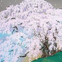 清晨 三春の瀧櫻